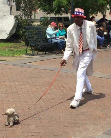 Festival Nova Orleans