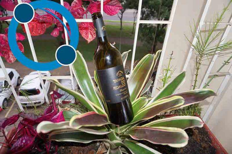 Tipos de Vinhos e Acompanhamentos - Tapada do Fidalgo