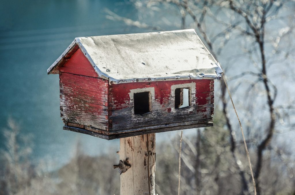 Casa da Árvore e Observatório de Pássaros