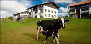 Turismo rural brasileiro