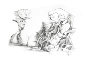 Exposição Roberto Burle Marx