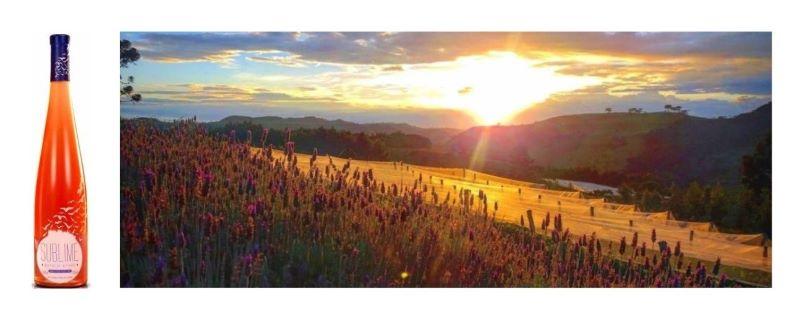 Monte Agudo Sublime (2015)