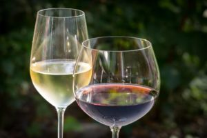 Guia básico do vinho