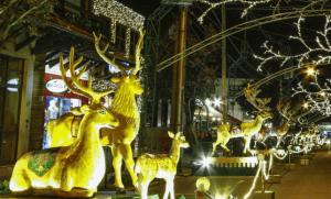 Natal Luz: Gramado