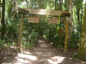 Parque Nacional do Ceará