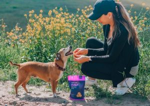 Cuidados com a alimentação dos pets