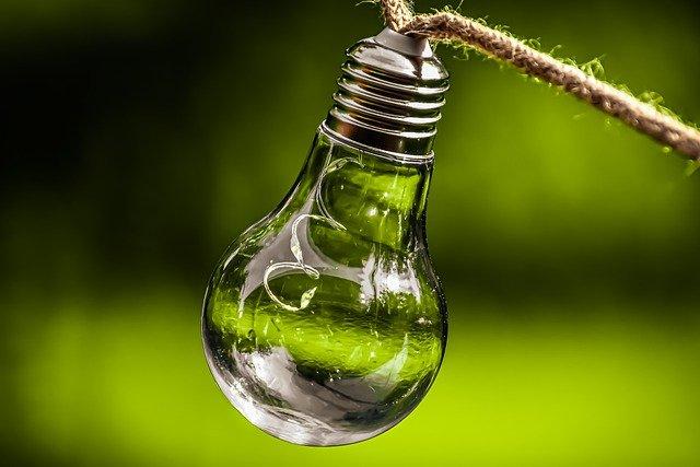 Economia ecológica na construção de um futuro sustentável